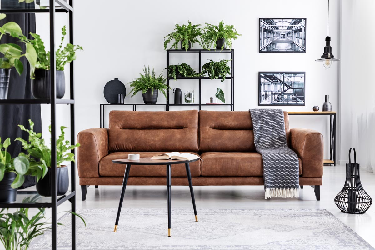 01 Deciding on Fabric or Leather Sofa