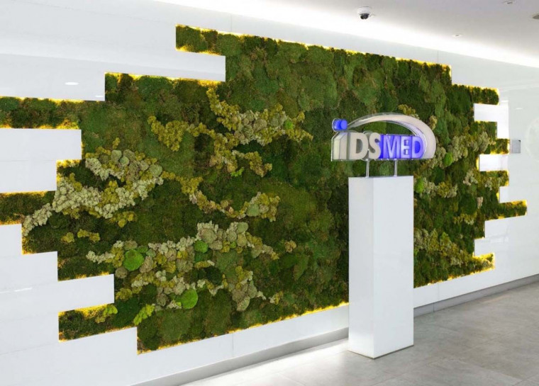 Botani Tawarkan Green Wall Art untuk Interior yang Lebih Alami