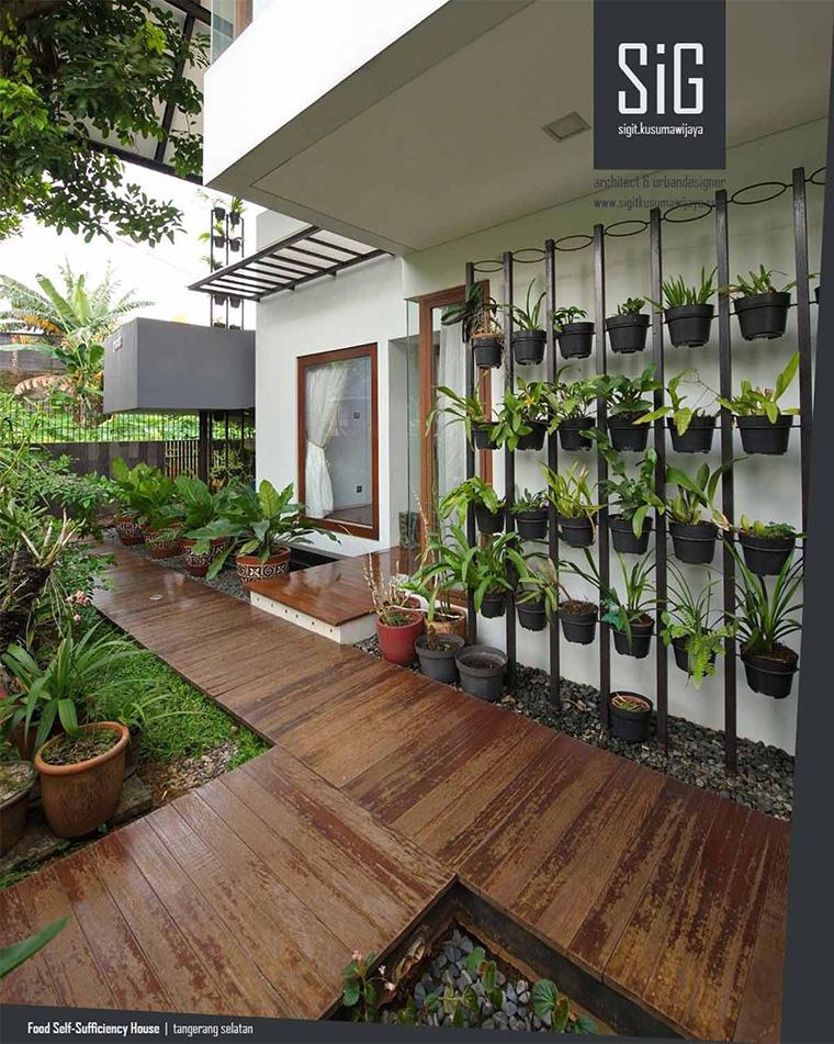 Desain kebun sayur Kebun sayur rumahan