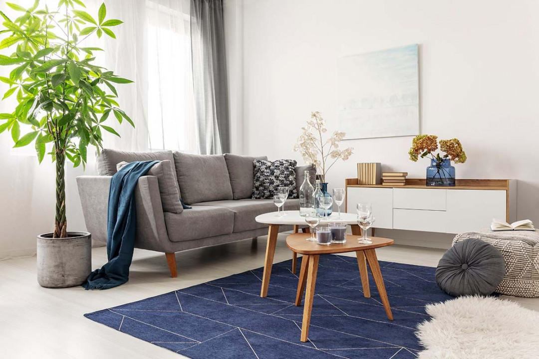 Tips to Choose the Perfect Rugs for Your Home