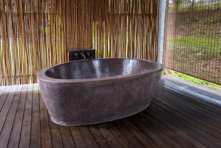 Six Ways to Implement Biophilic Interior Design in Your Home