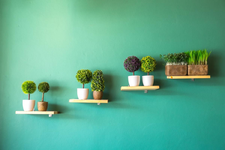 Five Tips for Home Decoration to Prevent Allergies
