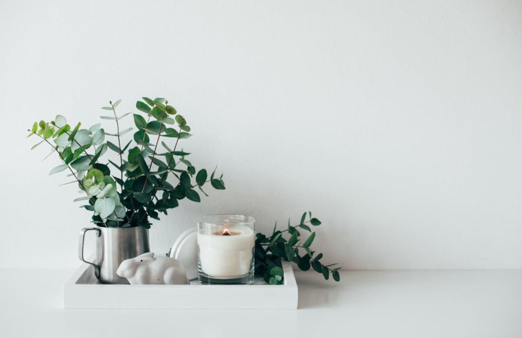 How to get an allergy-free home according to Australian home designers