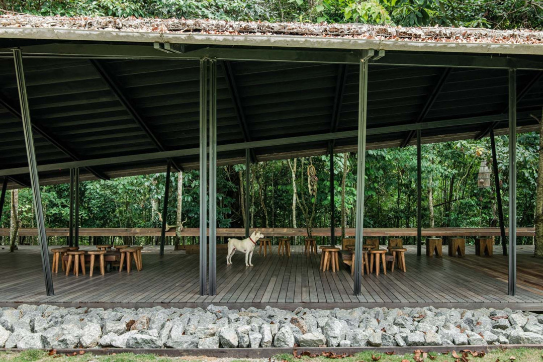 Mentahmatter Design Sets Up an Open Accommodation in the Middle of a Lush Rainforest